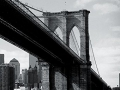 W2P-NEWYORK-008_3700166640108