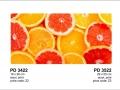 PD 3422-PD 3522