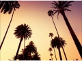 W4P-CALIFORNIA-001_3700166641013