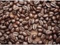 W4P-COFFEE-001_3700166642881