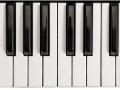 W4P-PIANO-001_3700166643710