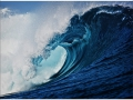 W4P-WAVE-001_3700166643666