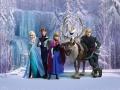 FTD xxl 2231 Frozen