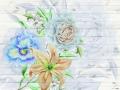 FT_XXL_3903-FTN_XXL_1218
